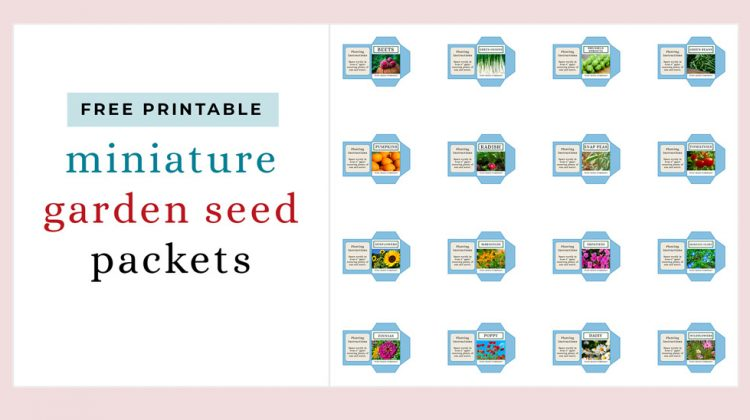 Miniature Garden Seed Packets Free Printable